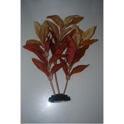 Aquarium Silk Plants