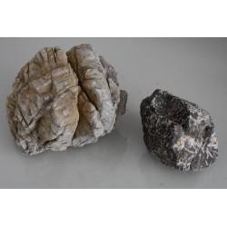 Natural Lichen Base Rock