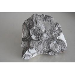 Mottled Grey Rocks