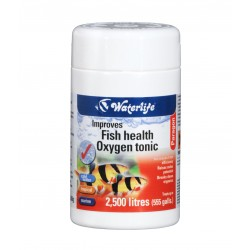 Paragon Oxygen Tonic Improves fish health