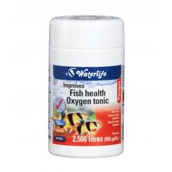 Paragon Improves fish health